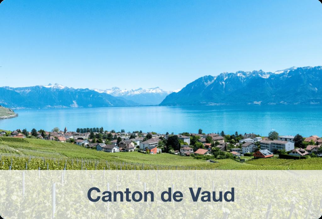 Biens immobilier à vendre dans le canton de Vaud