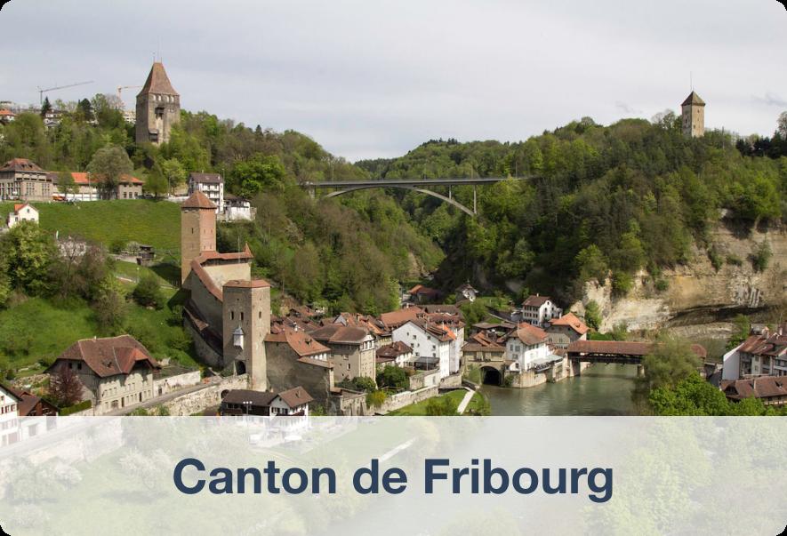 Biens immobiliers à vendre dans le Canton de Fribourg