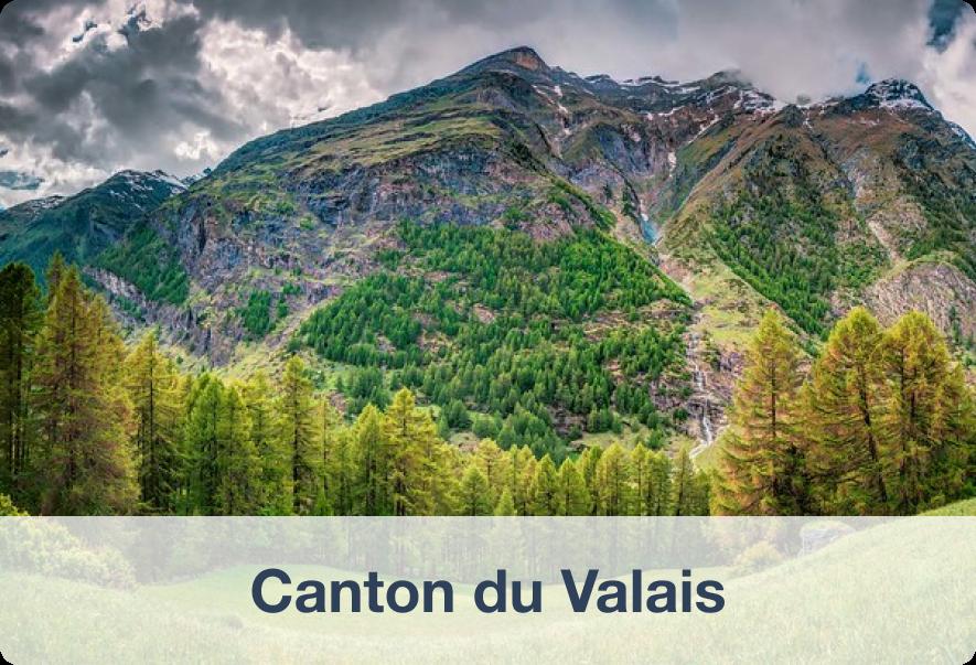 Biens immobiliers à vendre dans le Canton du Valais